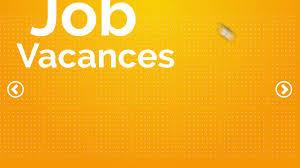 Jobs de vacances : Cette année c'est le chaos !